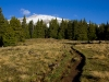 Mt-Elbert-06-2011-005