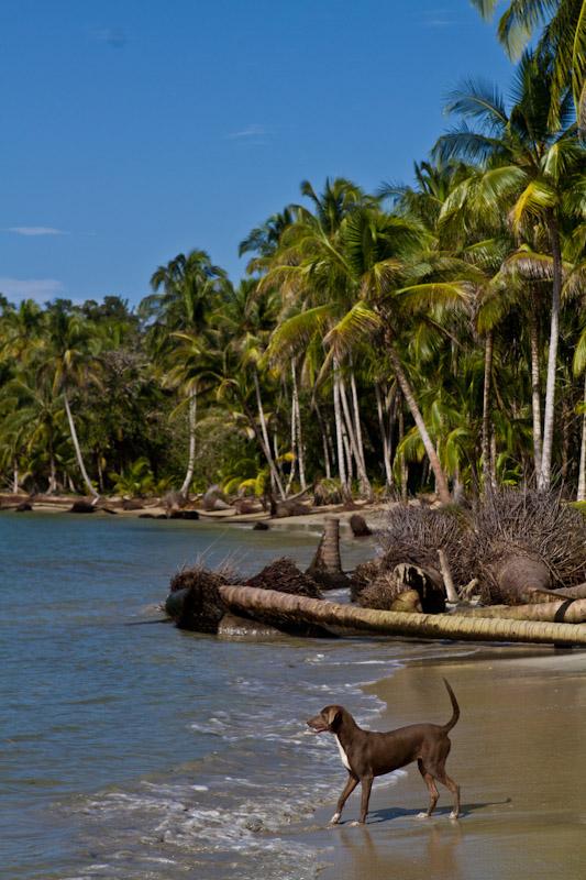 Panama-12-2010-015